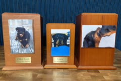 Request Quote: Blue Creek Pet Cremation  - San Francisco Bay Area, CA