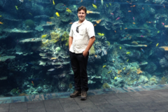 Request Quote: My fish tank man - San Diego, CA