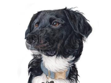 11X14 Detailed Portrait