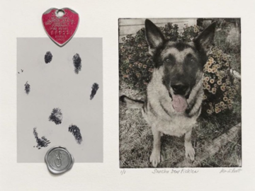 dog portrait with paw print and dog tag