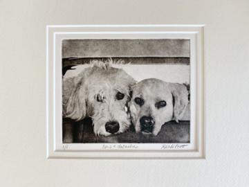 Custom Dog Portrait of Two Dogs