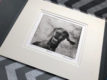 Custom Dog Portrait in Wrapping