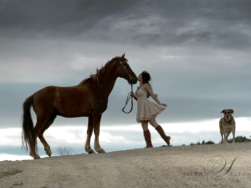Girl with horse and dog