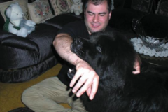 Request Quote: Alex Himel Certified Dog Trainer - Port Washington, NY