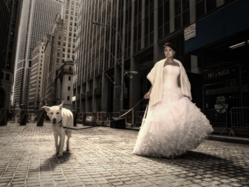 A white husky walking with a bride in white dress in an empty city