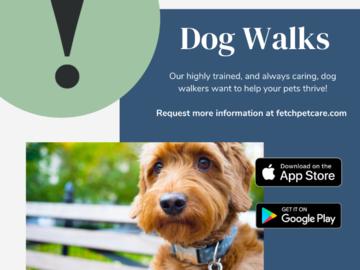 Dog walks - always ready