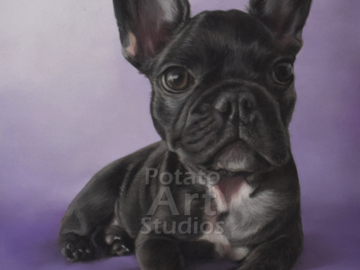 Choco the French Bulldog (9x12 inches)