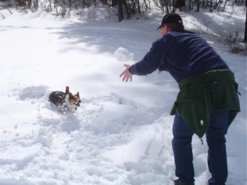 Snow ball catching is fun!