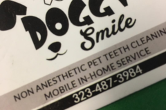 Bookable Offer: Non-anesthetic Dental Cleaning - Los Angeles, CA