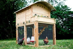 Bookable Offer: Backyard Chicken Rental and More - St. Louis, MO