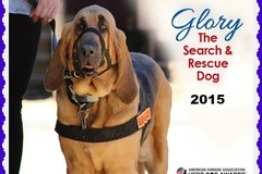 Award winning Bloodhounds help locate lost pets