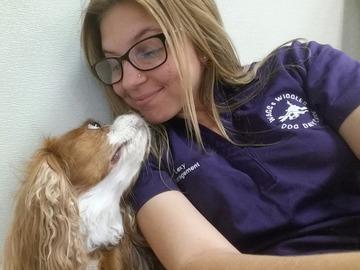 Dog Training And Boarding Orange County