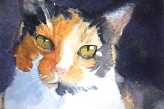 Request Quote: Animal Portraits in Watercolor - Oakhurst, CA