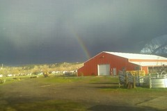 Overnight & Long Term Horse Boarding Stables - Billings, MT
