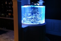 Request Quote: Aquariums Done Wright - Naperville, IL
