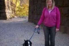 Start It Up Right Dog Training - Bethesda, MD