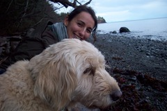 Request Quote: Animal Communication and Body/Energy Healing
