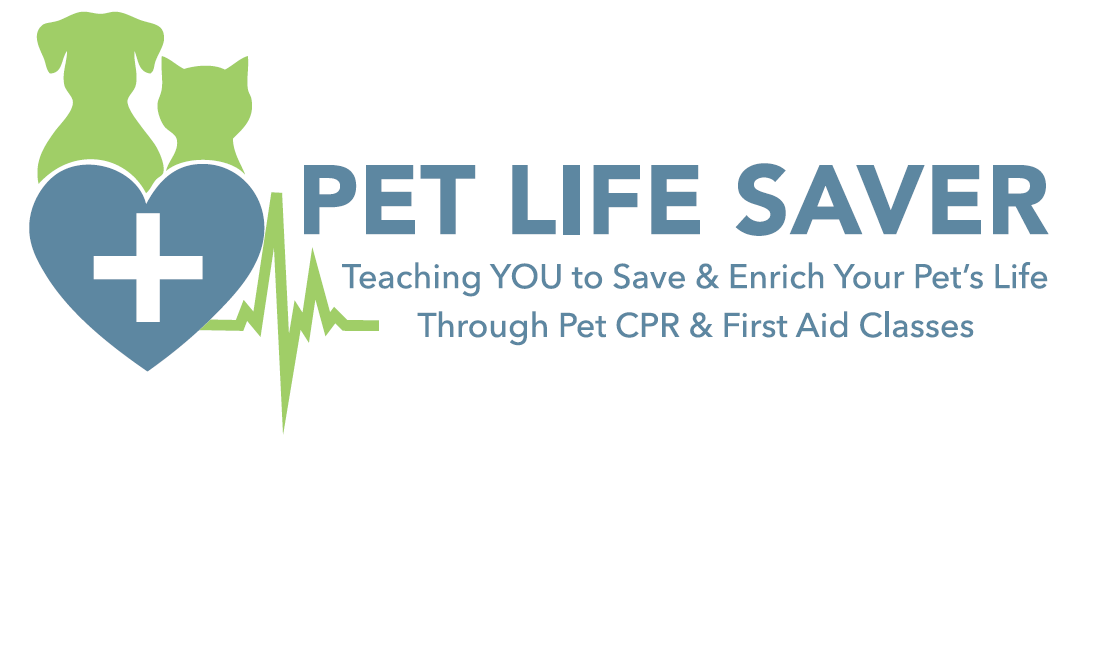 Pet Cpr And First Aid Class Jacksonville Fl