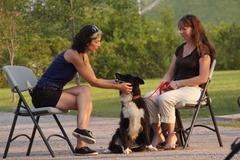 Request Quote: Media personality/Animal Communicator- Toronto, ON