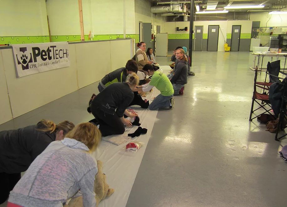 Hands On Classes For Pet First Aidcpr Indianapolis In