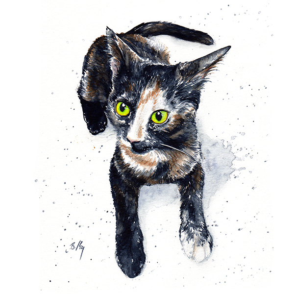 Custom Watercolour Pet Portraits by Clockwork Art  - Seattle, WA