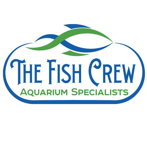 The fish crew