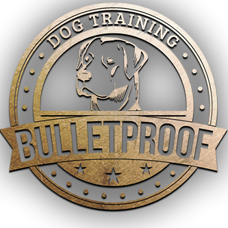 Bulletproof Dog Training San Antonio - San Antonio, TX