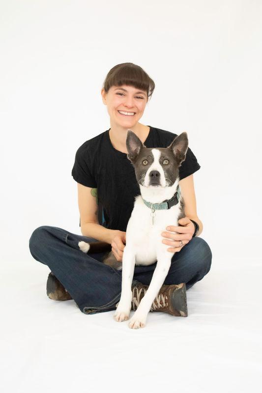 Dog Training Services - New Boston, NH