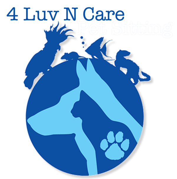4 Luv N Care pet Sitting- San Antonio, TX