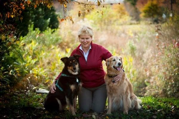 Energy Healing for Animals  - Virginia Beach, VA