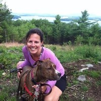Dog Walking in New Hampshire's Lakes Region