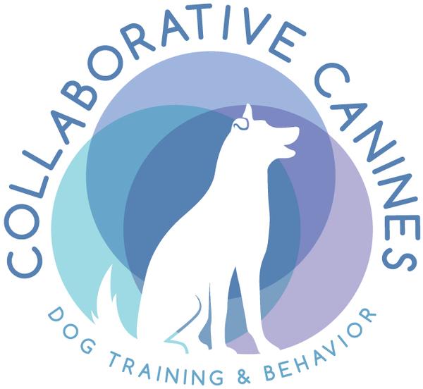 Collaborative Canines Dog Training - Anaheim, CA