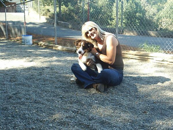 Bridewell Hilltop Kennels - Novato, CA
