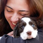 Chasing Tail Pet Care  - Austin, TX