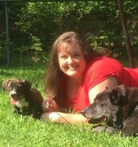 Traveling Dog Trainer  - Dallas, TX