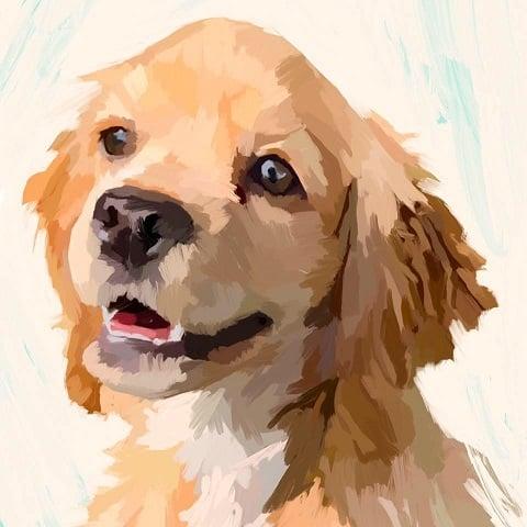 Delaney willard pet portraits   profile