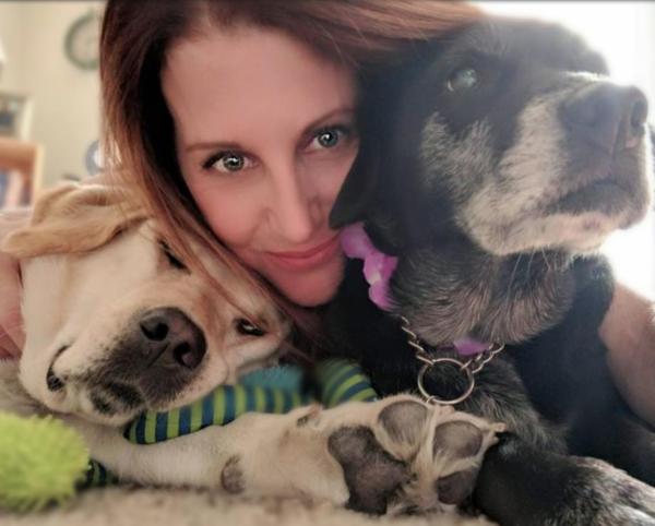 Chill Pet Massage - Novi, MI