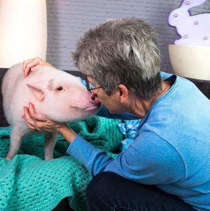 Jann Howell, Animal Communicator - Greenville, SC