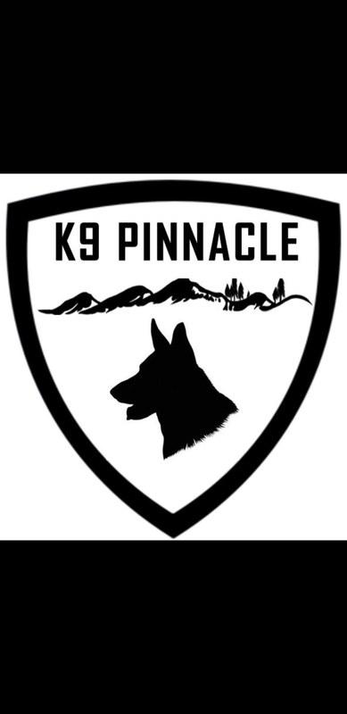 K9 Pinnacle  - Leesburg, VA