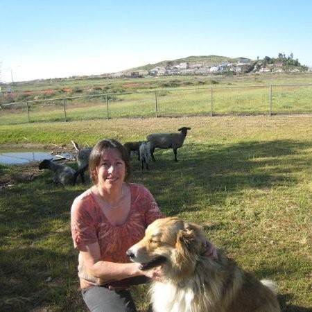 JC Pet Care - Winchester, CA