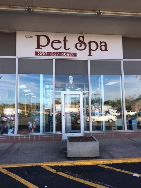 Come Join the Pet Spa Family - Newington, CT