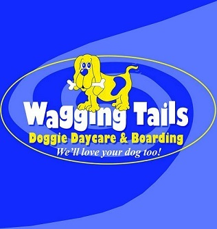 Wagging tails doggie daycare