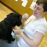 Dog and Cat Massage and Reiki - Thompson, CT