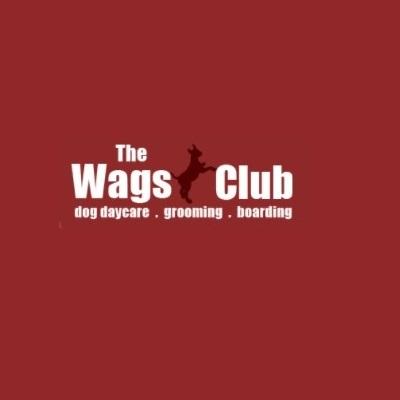 Dog Daycare   Thewagsclub.com - Los Angeles, CA