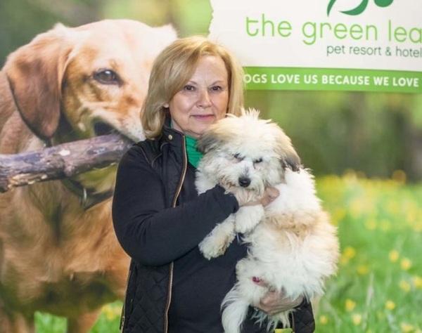 Green Leaf Pet Resort - Oakhurst, NJ