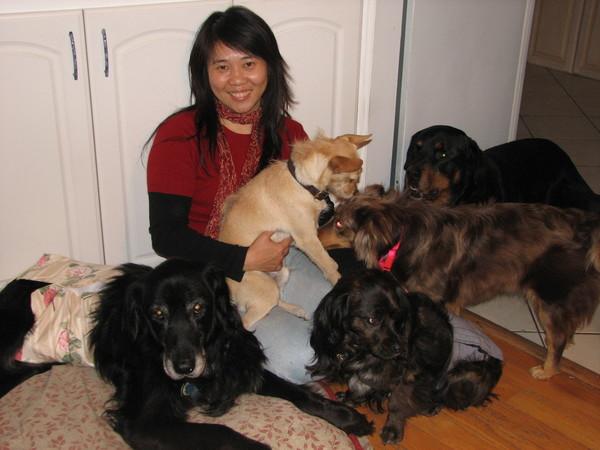 Care Animal Service - San Diego, CA