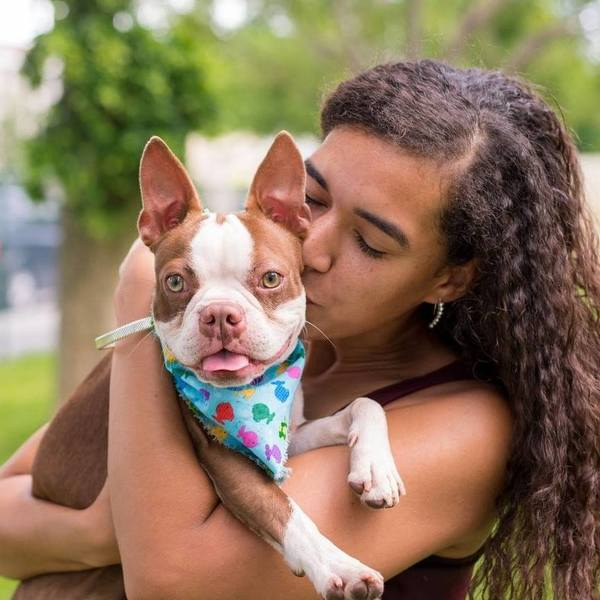 Always Aja H. Dog Walking and Pet Sitting - Hialeah Gardens, FL