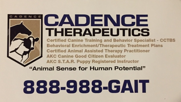 K9 Training & Behavior Modification - Livermore, CA