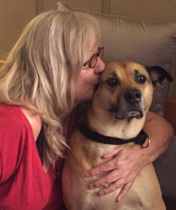 Reiki & Holistic Care for People and Pets - PT ORANGE, FL
