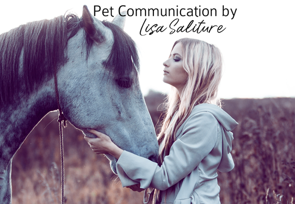 Remote Pet Communication and Chakra Healing